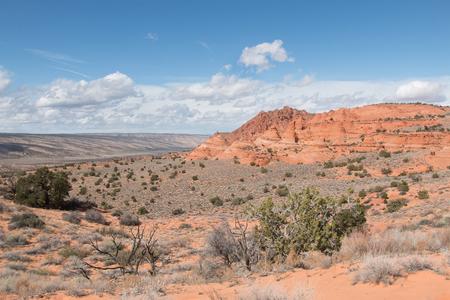 coyote: Landscape of South Coyote Buttes, Vermillion Cliff, Arizona, USA Stock Photo