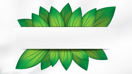 Abstract realistic green leaves with white banner on white background, with copy space for text. EPS10, vector, illustration. Çizim