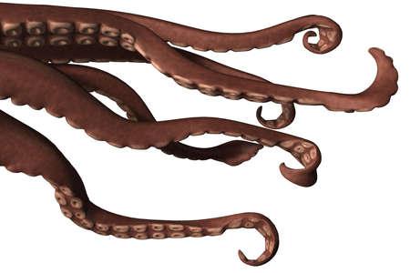 acetabulum: a brown comic calamari with a big sack looking friendly Stock Photo