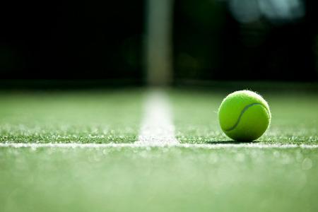 테니스 잔디 코트에서 테니스 공