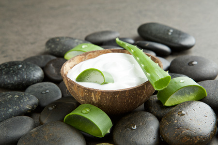 moisturizers: spa concept. slice aloe vera on white cream in coconut shell with stone background Stock Photo