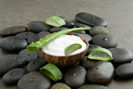 spa concept. slice aloe vera on white cream in coconut shell with stone background Reklamní fotografie