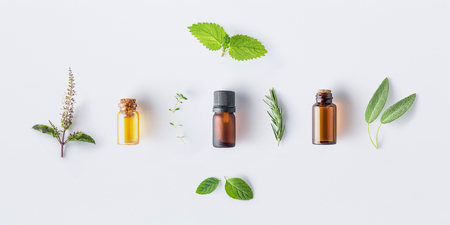 Bottle of essential oil with fresh herbal sage, rosemary, oregano, thyme, lemon balm spearmint and peppermint setup with flat lay on white background Stok Fotoğraf
