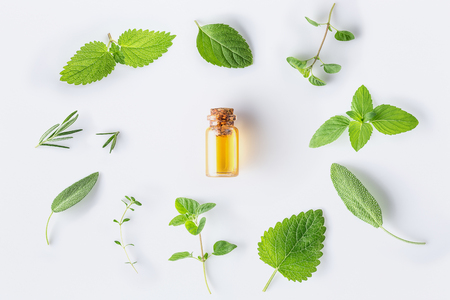 Bottle of essential oil with fresh herbal sage, rosemary, oregano, thyme, lemon balm spearmint and peppermint setup with flat lay on white background Banque d'images