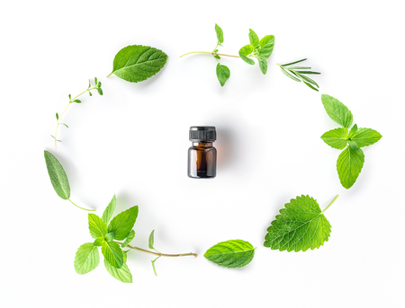 Bottle of essential oil with fresh herbal sage, rosemary, oregano, thyme, lemon balm spearmint and peppermint setup with flat lay on white background Stock Photo