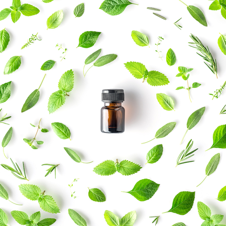 Bottle of essential oil with round shape of fresh herbs and spices basil, sage, rosemary, oregano, thyme, lemon balm  and peppermint setup with flat lay on white background
