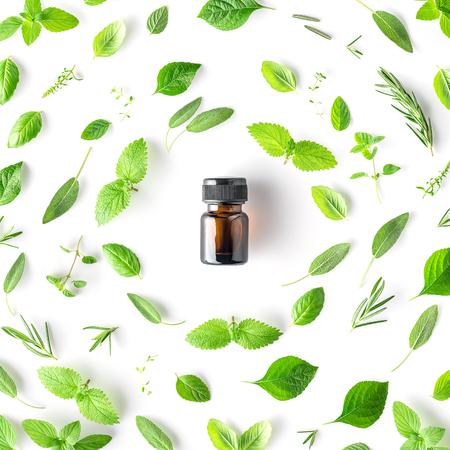 Flesje etherische olie met ronde vorm van verse kruiden en specerijen basilicum, salie, rozemarijn, oregano, tijm, citroenmelisse en pepermunt setup met plat leggen op witte achtergrond