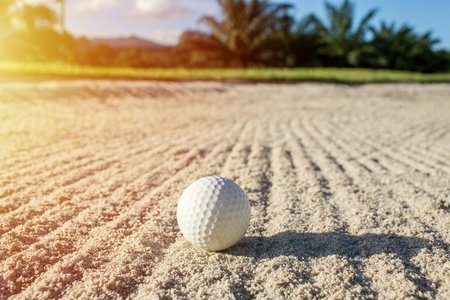 Selective focus white golf ball on the sand bunker with green field Stockfoto