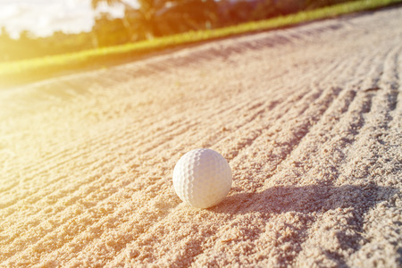 Selective focus white golf ball on the sand bunker with green field 스톡 콘텐츠