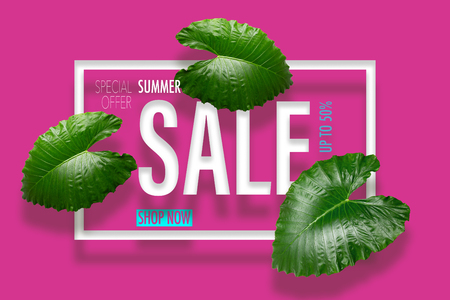 Summer sale banner with tropical green leaves