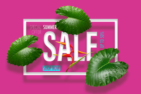 Summer sale banner with tropical green leaves heliconia flower Standard-Bild