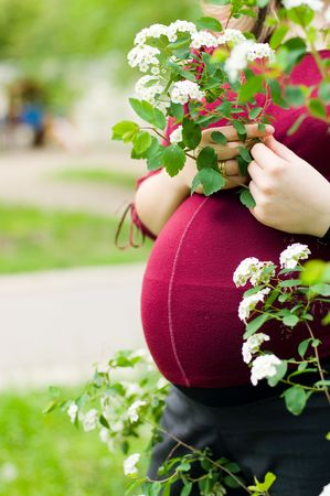 Close-up of an anonymous pregnant woman photo