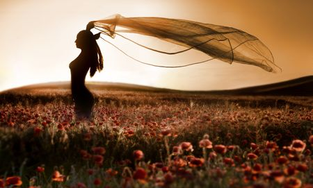 Silhouette of beautiful girl in the poppy field, artistic photo