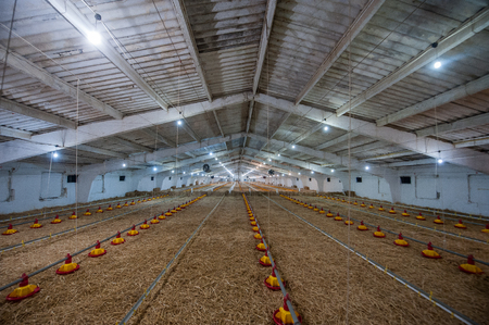 large poultry farms, is preparing to move to a new location Editorial