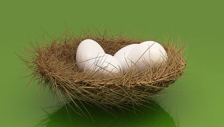 Eggs in a nest on green background