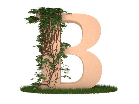 alphabetical order: The letter twined ivy stay on a grass Stock Photo
