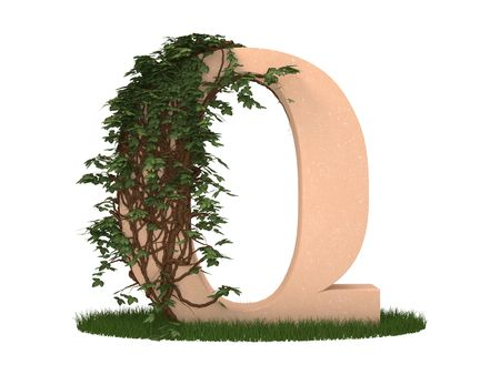 The letter twined ivy stay on a grass Stock Photo