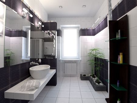 3d rendering black and white bathroom on zen style photo