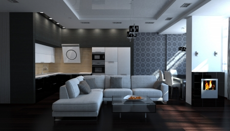 furnished: Modern black and white stylish interior livingroom