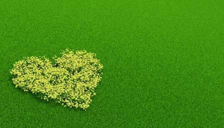 yellow flowerbed of in a shape of heart on the grass Stock Photo