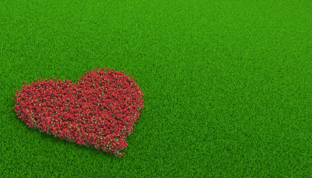 flowerbed of roses in a shape of heart on the grass Stock Photo