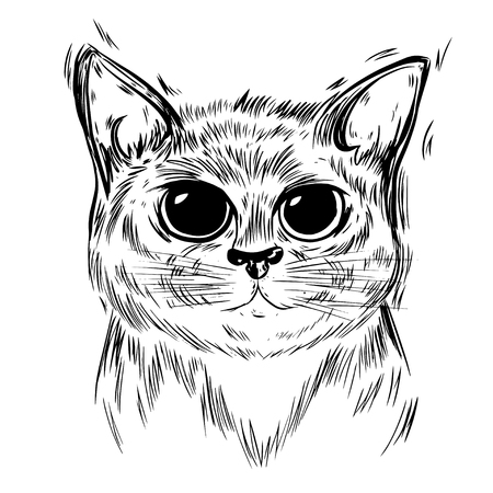 Stylized cat. Template for cards and any printing products, printing on clothing. Vector illustration.