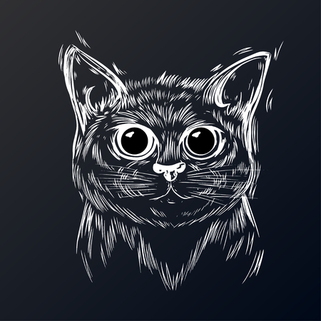 Stylized cat with beautiful cute eyes. Kawaii. Template for cards and any printing products, printing on clothing. Vector illustration.