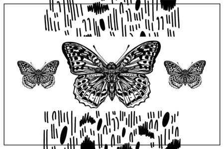 Beautiful hand drawn vector illustration sketching of butterflies. Boho style drawing. Use for postcards, print for t-shirts, posters, wedding invitation, tissue, linens Stock Vector - 127998580
