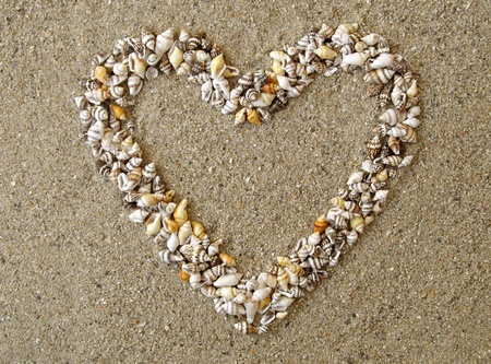 Seashells forming a heart on the colorful sandy beach  photo