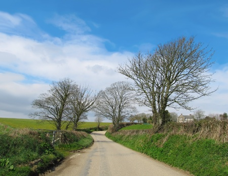 devon: Small country road in Southern part of Cornwall, United Kingdom                                 Stock Photo