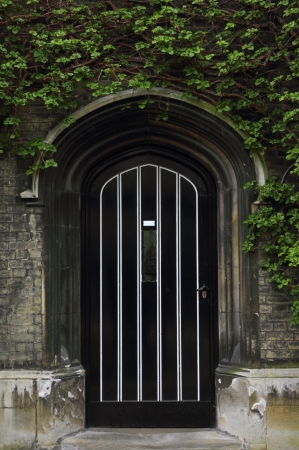 Typical old English door with green ivy above the entrance. photo