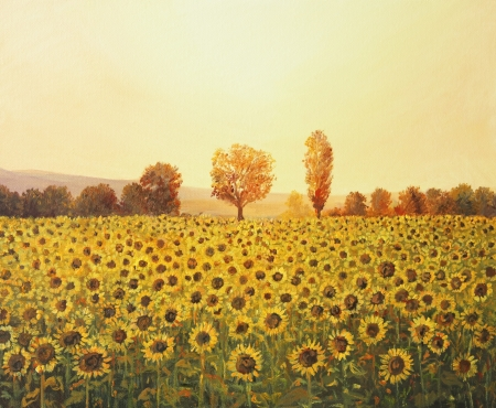 Sunflowers Field at sunset, painted on the canvas by me, Kiril Stanchev