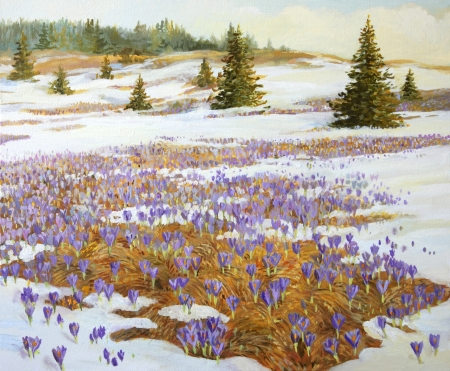 Cold Weather is leaving theme  A meadow with blooming spring crocus, painted on the canvas by me, Kiril Stanchev  photo