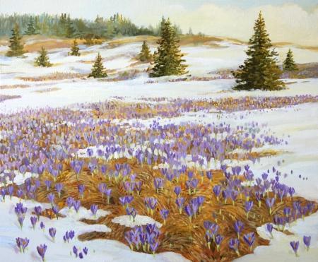 krokus: Koud weer is het verlaten van thema Een weide met bloeiende lente krokus, geschilderd op het doek door mij, Kiril Stanchev Stockfoto
