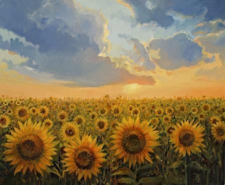 zonnebloem: Zonnebloem veld in het licht van de ondergaande zon vertegenwoordigde op het doek door mij - Kiril Stanchev  kirilart .