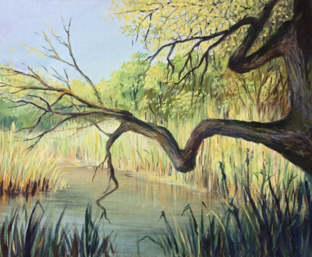 tranquillity: An oil painting on canvas of a small peaceful lake in the beginning of the autumn. A place full of tranquillity where you can actually hear the silence.