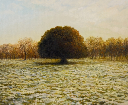 An oil painting on canvas of a warm golden sunset view of an old Holm Oak Tree in the end of the winter, with patches of snow in the park.  photo