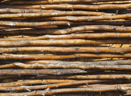bended: Background of an Old fence made from bended wooden sticks. Stock Photo