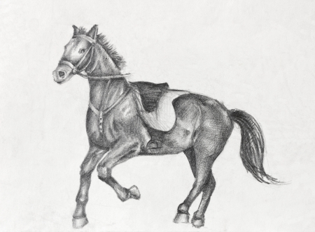 etude: Scetch of a running horse, pencil drawing on white paper artist at age of 15.