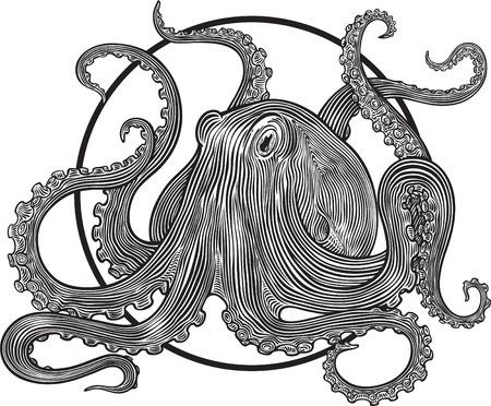 ilustración con pulpo grabado estilo Ilustración de vector