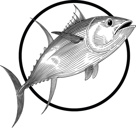 tuna: black and white illustration of tuna engraving style. Round frame can be easily removed.