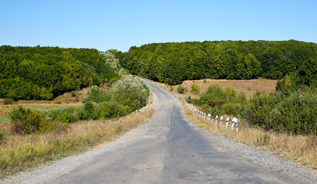 gully: Old road through field and forest