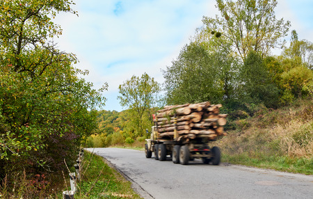 logging truck: Logging truck timber lorry in motion blur