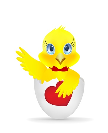 Chick with a heart on a white background Vector