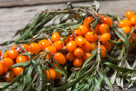 Fresh seabuckthorn on the vintage wooden table Stock Photo