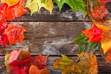 Colorful maple foliage on the vintage wooden table Stock Photo - 86868990