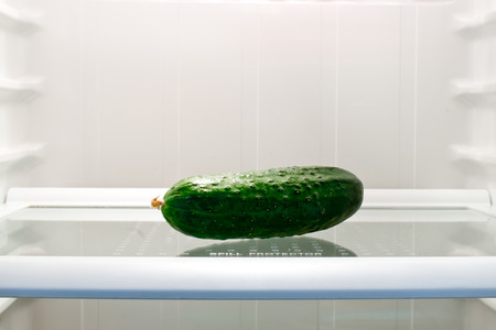 fridge: the cucumber in the fridge