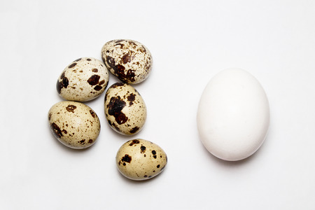 chicken and quail eggs on white background Imagens - 78237668