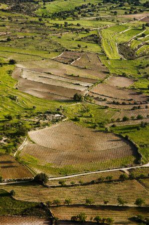 Aerial view of farm fields, Cyprus