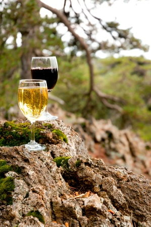 aligote: Glass of red and white wine on a mossy stone. Outdoor